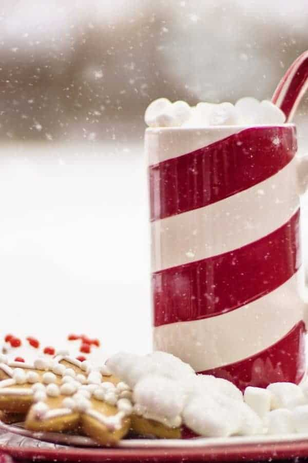 25 Frugal & Easy Christmas Desserts To Try This Holiday Season