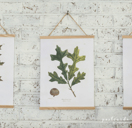 DIY Fall Printable for homes