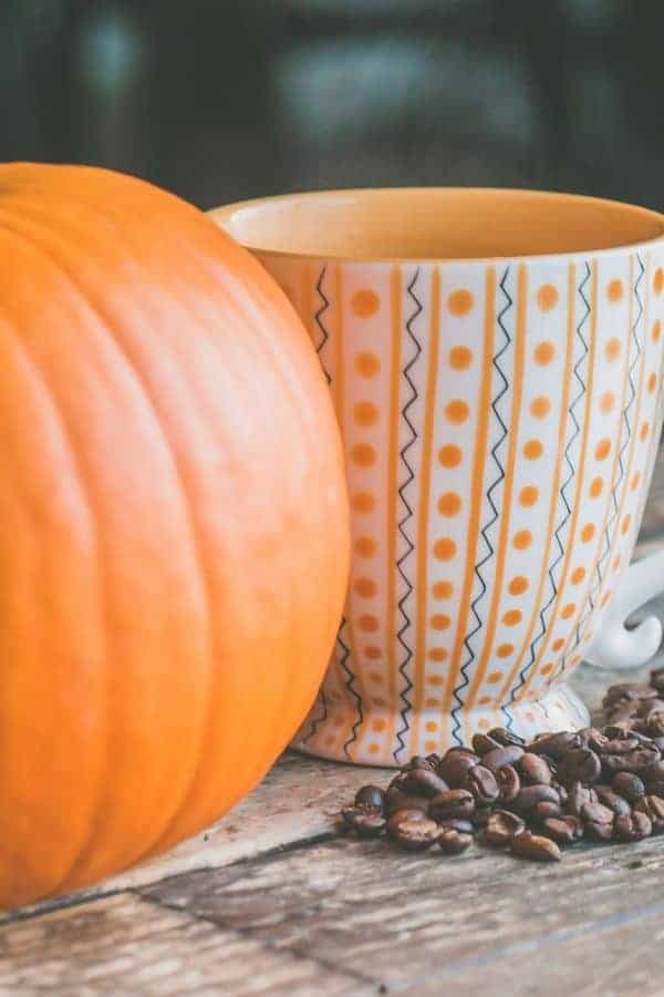 15 Frugal DIY Fall Home Decor and Project Ideas